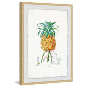 Botanical Pineapple 12 x 8 In. Framed Painting Print