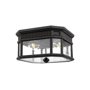 Castle Black 12-Inch Two-Light Outdoor Flush Mount