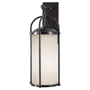 Derry Espresso 10-Inch One-Light Outdoor Wall Light