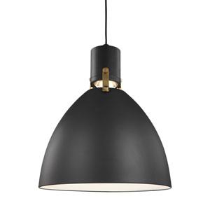 Knole Black 14-Inch LED Dome Pendant