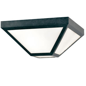 Randolph Black Two-Light Outdoor Flush Mount