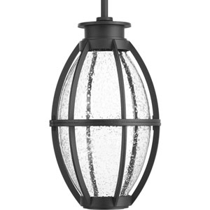P550010-031-30: Pier 33 Black Energy Star One-Light LED Outdoor Hanging Lantern