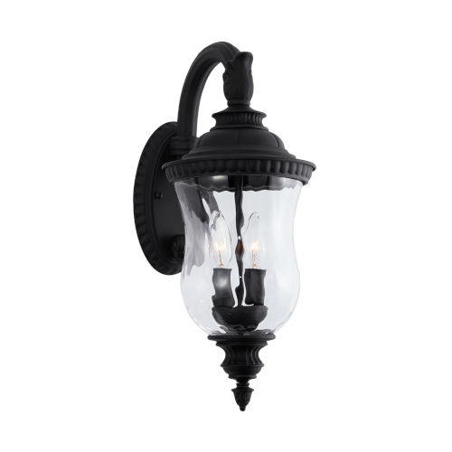 Ashford Black 20-Inch Two-Light Outdoor Wall Mount with Water Glass