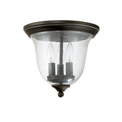 Capital Lighting Fixture Company Small Old Bronze Three Light Outdoor Ceiling Fixture