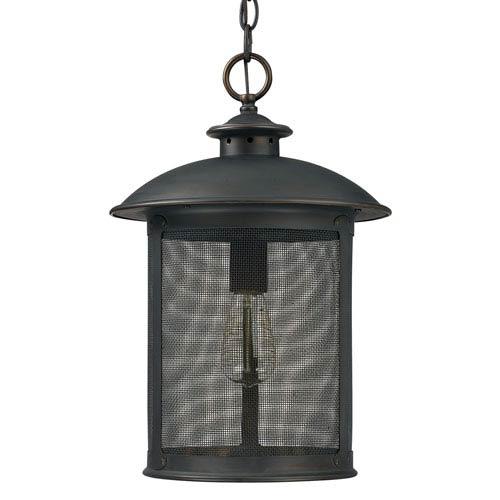 Capital Lighting Fixture Company Dylan Old Bronze One-Light Outdoor Hanging Lantern