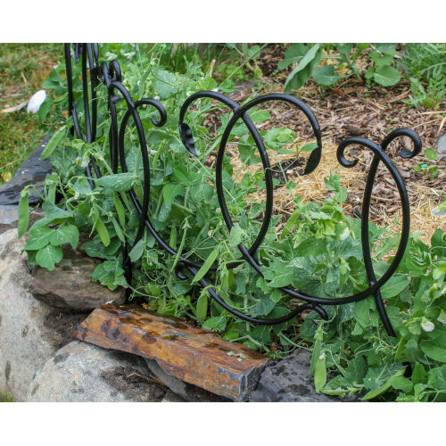 Black Powdercoat Scroll Border Fence Section, Set of Four
