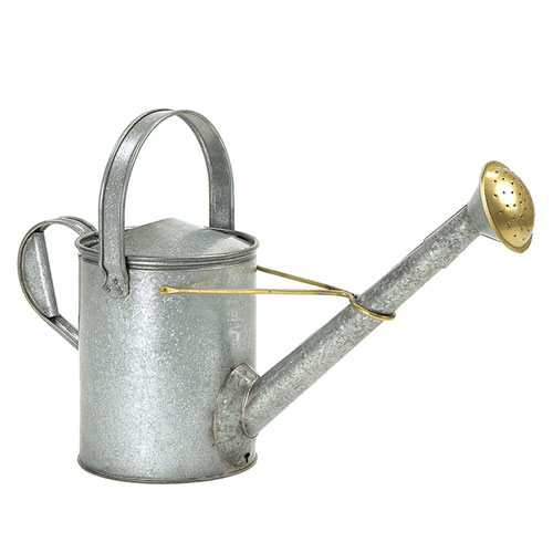 Galvanized Long Necked  Watering Can