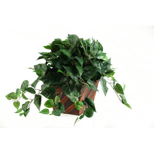 D & W Silks Philo Ivy in Square Wooden Planter