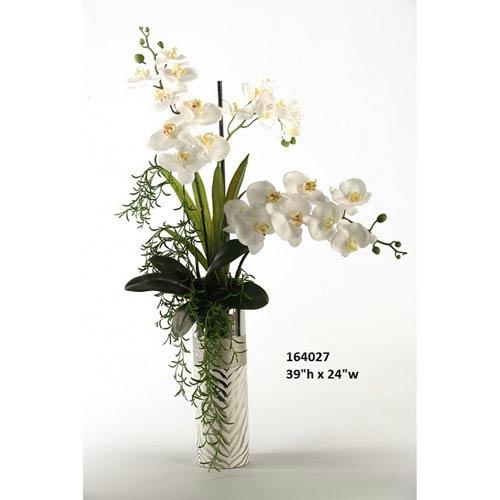 Cream Phael and Vanda Orchids in Silver Zebra Print Ceramic Planter