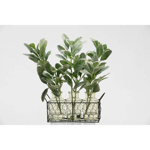 D & W Silks Grey and Green Lamb Ft. S Ear Branches in Glass Jars in Metal Holder