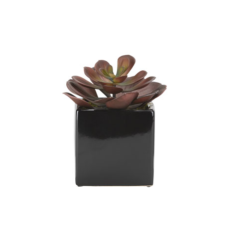 D & W Silks Large Red Echeveria in Square Black Ceramic Planter