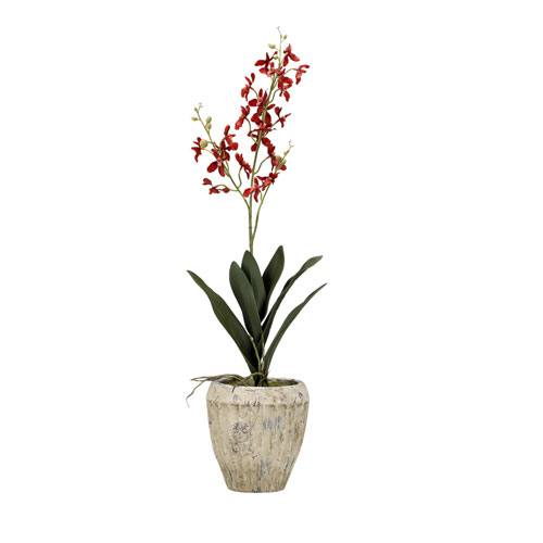 D & W Silks Red Baby Dendrobium Orchid in Round Aged Cement Planter