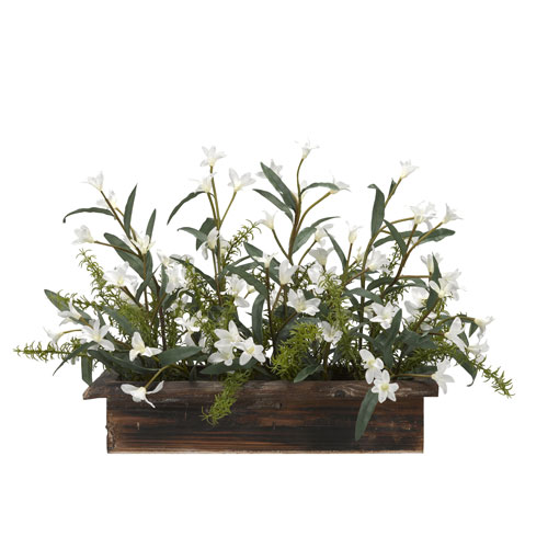 30 In. Wide White Phlox Flowers in Rectangle Wooden Planter