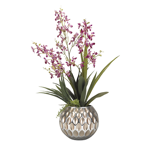 Purple Baby Dendrobium Orchids in Champagne Glass Bowl