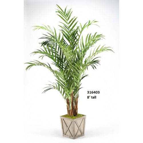 D & W Silks 8 Ft. Kentia Palm in Weathered Wooden Box Planter
