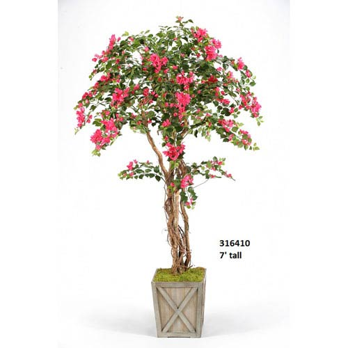 7 Ft. Bougainvillea Tree in Weathered Wooden Box Planter