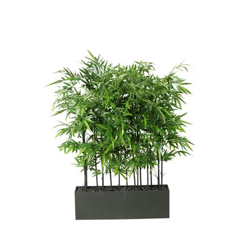 Black Bamboo Screen in Rectangle Planter