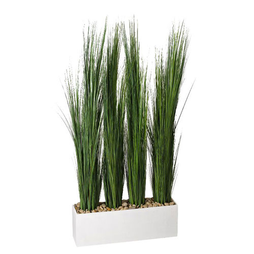 Tall Onion Grass Screen in White Wooden Rectangle Planter