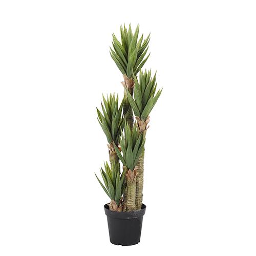 48 In. Aloe Tree