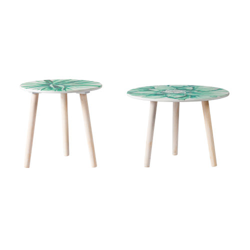 Natural Round Side Table with Succulent Table Top, Set of 2