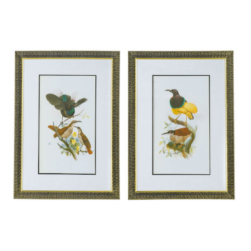 Yellow and Brown Birds Wall Art - Set of 2