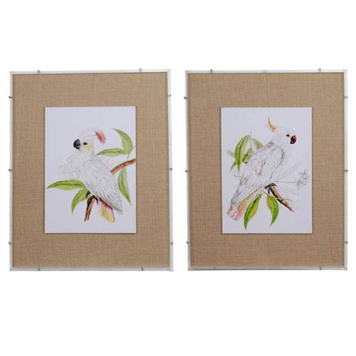 A & B Home White Cockatoo Framed Prints, Set of Two