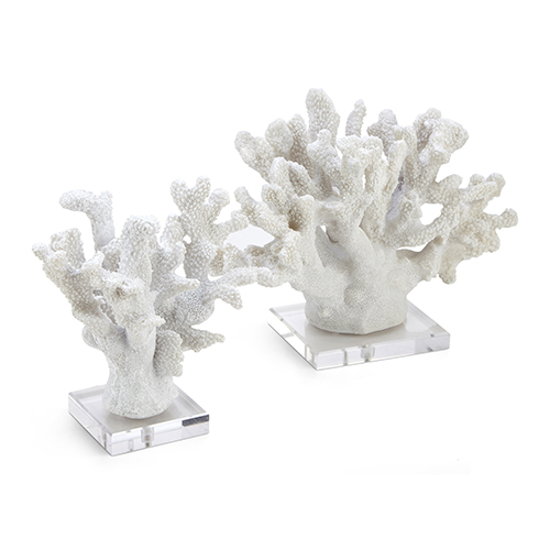 Coral White Coral Sculpture, Set of 2