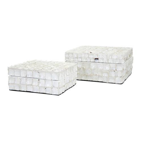 IMAX Barbuda Shell Boxes, Set of 2