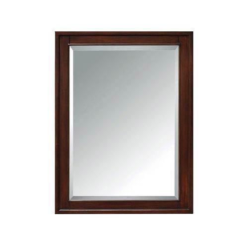 Madison Light Espresso 24-Inch Mirror Cabinet