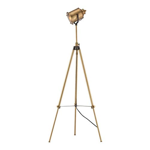 Dimond North Gower Aged Brass One-Light Floor Lamp