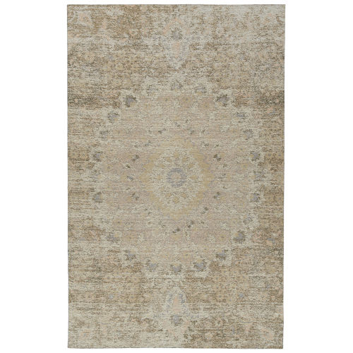 Santiago Navy and Brown Indoor/Outdoor Rug