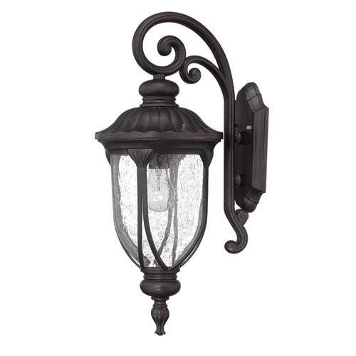 Laurens Black Coral Outdoor Wall Lantern