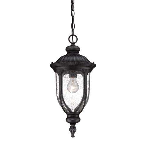 Laurens Matte Black Outdoor Hanging Lantern