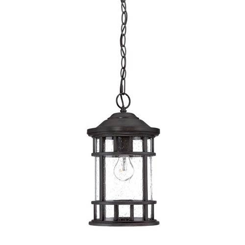 New Vista Black Coral One Light Hanging Lantern Fixture
