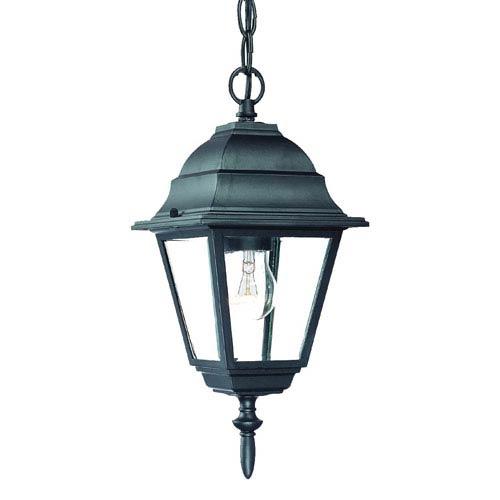 Acclaim Lighting Builders Choice Matte Black One Light