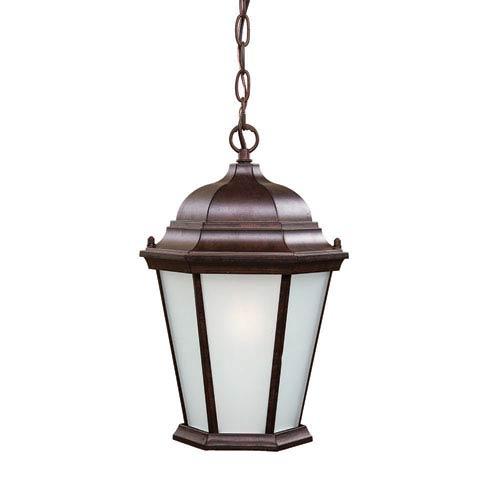 Acclaim Lighting Richmond Burled Walnut Outdoor Hanging Lantern