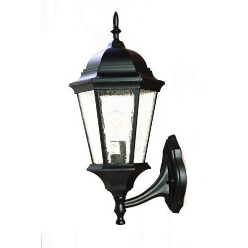 Richmond Matte Black One-Light 20.5-Inch Outdoor Wall Mount