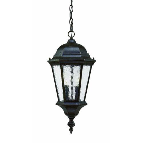Telfair Marbleized Mahogany Two-Light 20-Inch Outdoor Pendant