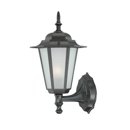 Acclaim Lighting Camelot Small Wall Lantern with Matte Black Finish