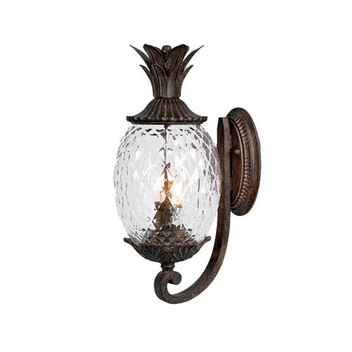 Acclaim Lighting Lanai Black Coral Two-Light 18-Inch Outdoor Wall Mount