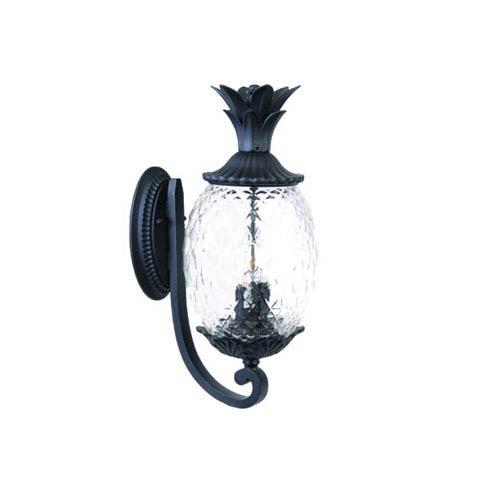 Acclaim Lighting Lanai Matte Black Three-Light 21.75-Inch Outdoor Wall Mount
