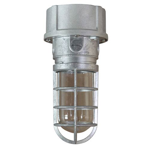 ANP Lighting Retropolitan Galvanized 5.5-Inch Height One-Light Outdoor Ceiling Mount
