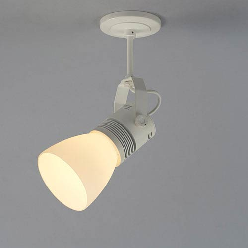 Bruck Lighting Systems Z15 White 1600 Lumen LED Spotlight with White Shade