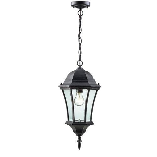 Z-Lite Wakefield Black One-Light Outdoor Pendant