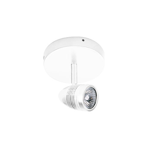 White One-Light Ceiling Mount