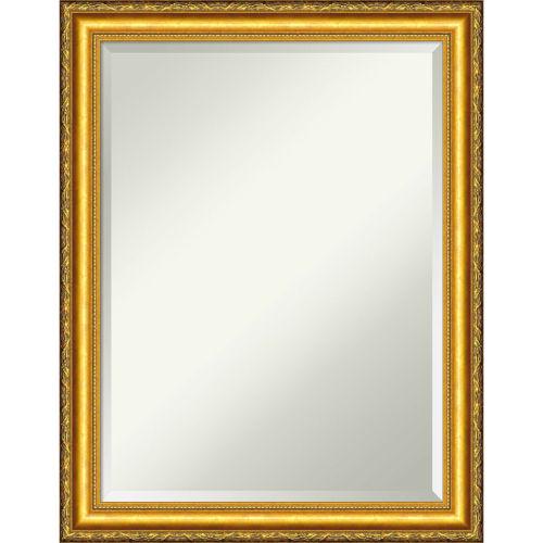 Colonial Gold 22W X 28H-Inch Decorative Wall Mirror