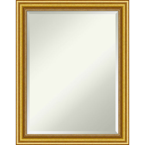 Townhouse Gold 22W X 28H-Inch Bathroom Vanity Wall Mirror