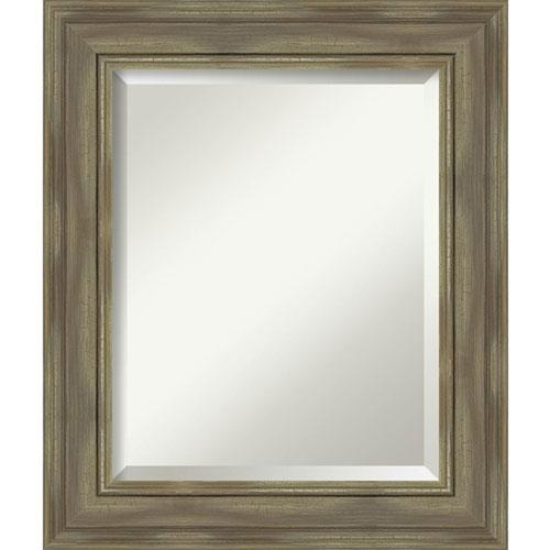 Amanti Art Alexandria Graywash 22 Inch Bathroom Wall Mirror Dsw4094437 Bellacor