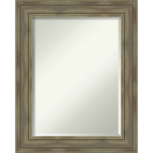 Alexandria Graywash 24-Inch Wall Mirror