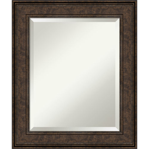 Ridge Bronze 22W X 26H-Inch Bathroom Vanity Wall Mirror
